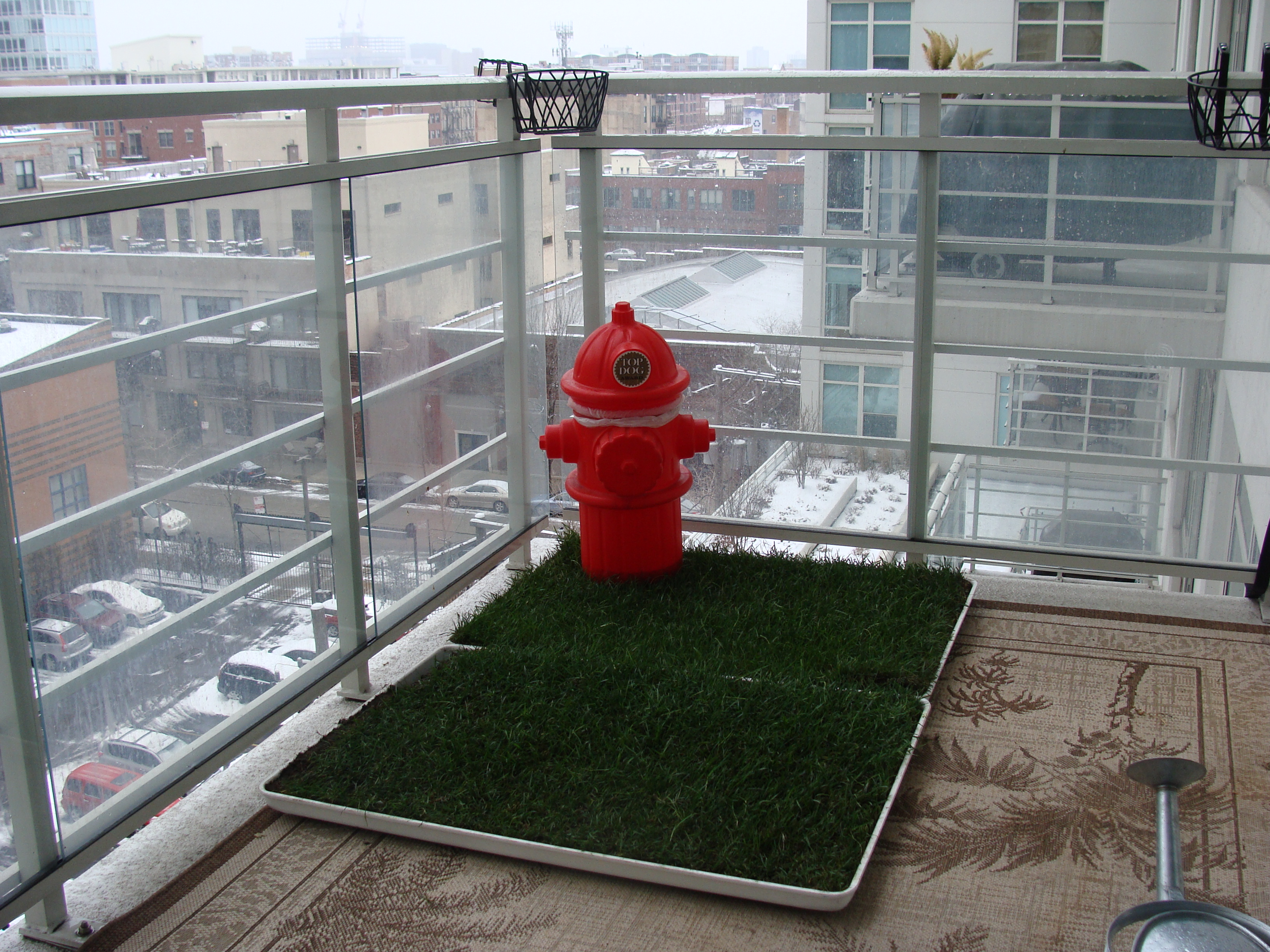 Delightful High Rise Winter Dog Patio